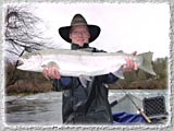 Even our Guides get to catch a big one once in a while, Tony Helfrich with a big Steelhead on the Rogue.